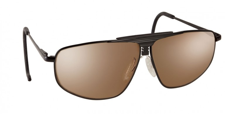 ProVision frames with brown lenses